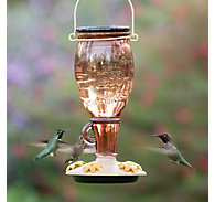 Perky-Pet® Sugar Maple Top-Fill Glass Hummingbird Feeder - 24 oz Nectar Capacity