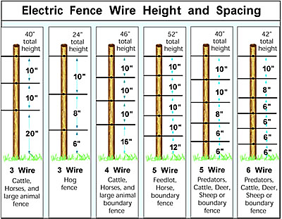 wire height and spacing