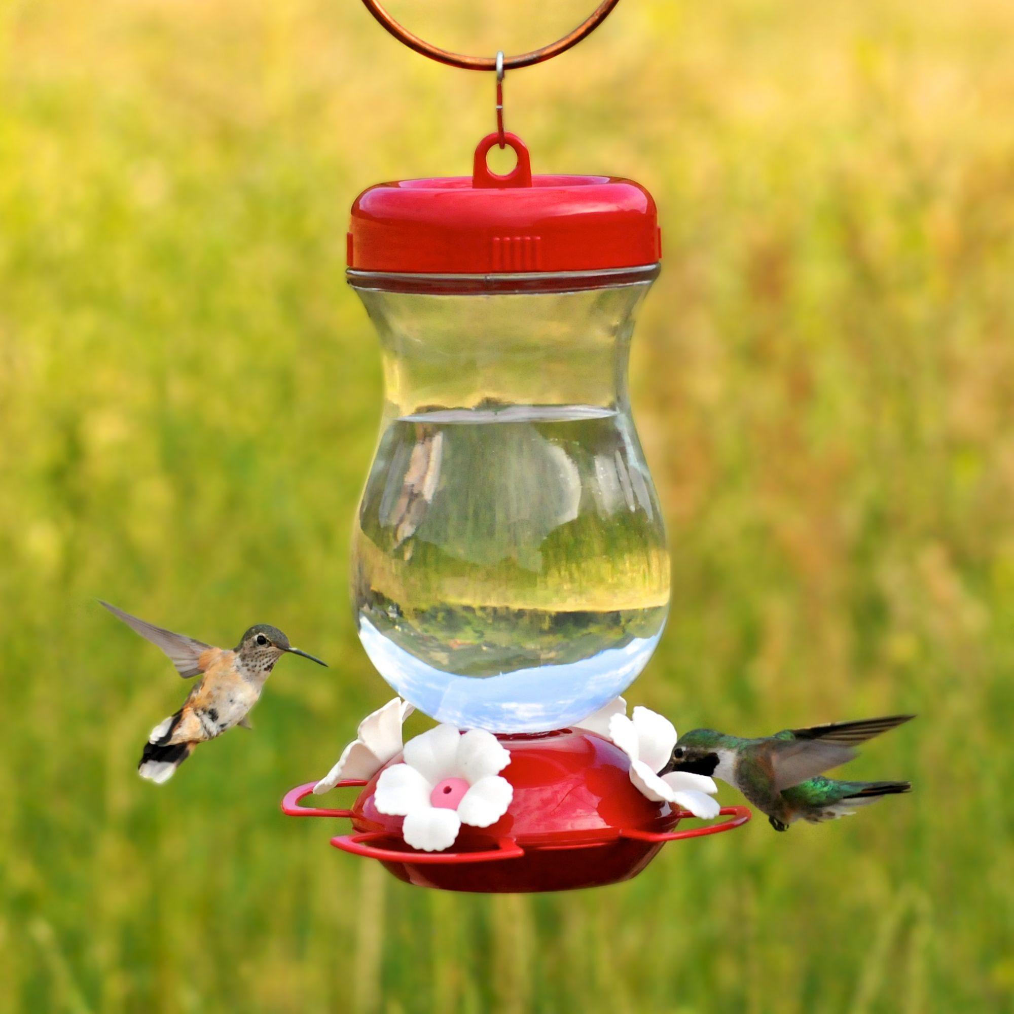 Perky Pet 24 Oz Glass Top Fill Hummingbird Feeder