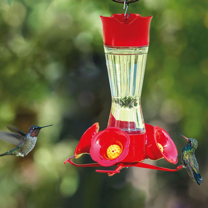 outdoors garden lakeside hummingbird the feeder humm hmf humming outdoor bird decor trade collection jmp