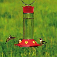 Perky-Pet® Glass Hummingbird Feeder - 30 oz Nectar Capacity