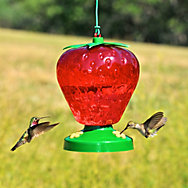 Perky-Pet® Strawberry Plastic Hummingbird Feeder