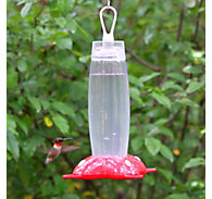 Perky-Pet® Rose Petal Hummingbird Feeder - 19 oz Nectar Capacity