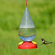 Garden Song® Dew Drop Plastic Hummingbird Feeder