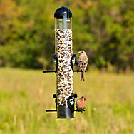Perky-Pet® Squirrel Shield Tube Feeder