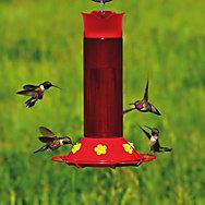 Perky-Pet® Hummer's Favorite Plastic Hummingbird Feeder - 30 oz Nectar Capacity