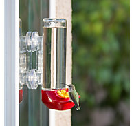 Perky-Pet® Window-Mounted Glass Hummingbird Feeder - 14 oz Nectar Capacity