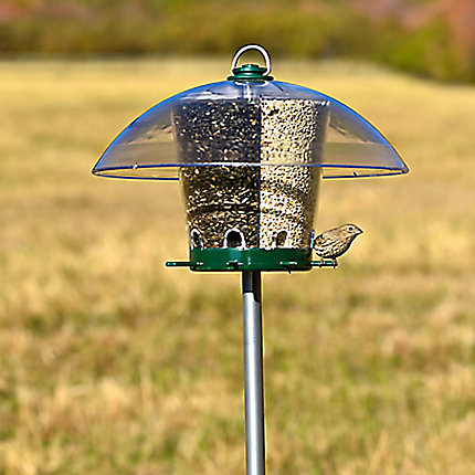Perky-Pet® Universal Bird Feeder Pole