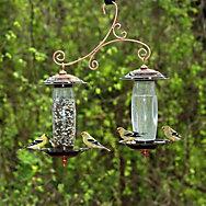 Perky-Pet® Garden Sip & Seed™ Bird Feeder