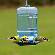 Perky-Pet® Water Cooler Bird Waterer