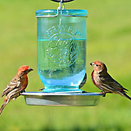 Perky-Pet® Mason Jar Wild Bird Waterer