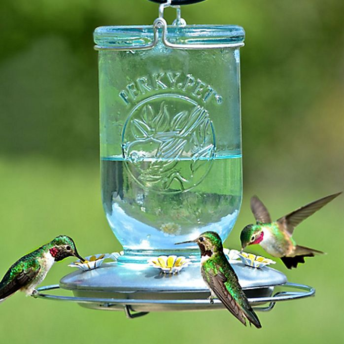 treasures com sale feeders pd shop at garden feeder for glass lowes hummingbird