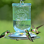Perky-Pet® Mason Jar Glass Hummingbird Feeder