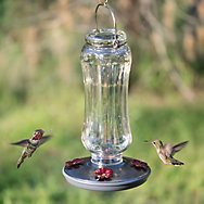 Perky-Pet® Starglow Vintage Hummingbird Feeder