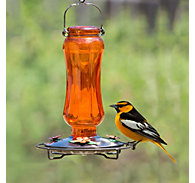 Perky-Pet® Carnival Glass Vintage Oriole Feeder