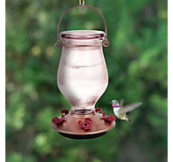 Perky-Pet® Rose Gold Top-Fill Glass Hummingbird Feeder - 24 oz Nectar Capacity