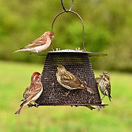 Perky-Pet® Original Bronze Wild Bird Feeder