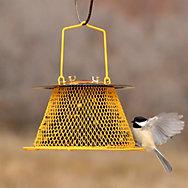 NO/NO® Designer Single Tier Wild Bird Feeder