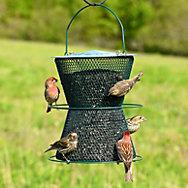 NO/NO® Hourglass® Forest Green Wild Bird Feeder
