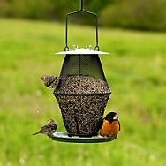 NO/NO® Mixed Seed Lantern Wild Bird Feeder