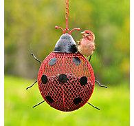 Perky-Pet® Ladybug Mesh Wild Bird Feeder