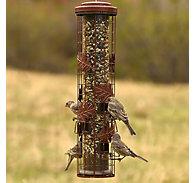 Perky-Pet® Squirrel-Be-Gone® Cylinder Wild Bird Feeder