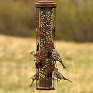 Perky-Pet® Squirrel-Be-Gone® Cylinder Wild Bird Feeder