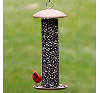 Perky-Pet® Straight-Sided Sunflower Tube Wild Bird Feeder