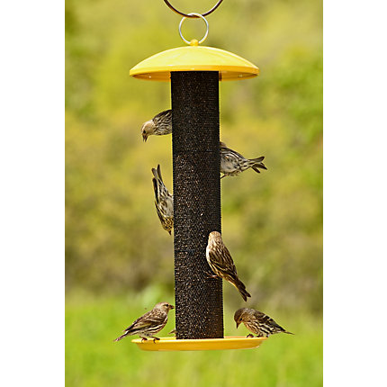 stokes bird feeders roof finch metal select screen ip capacity seed feeder with lb yellow