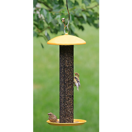 p bird corn no product cfm prod feeders tube sweet feeder wild finch display products