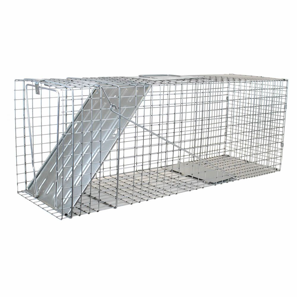 Large 1 Door Live Animal Trap Havahart 174 1079 B