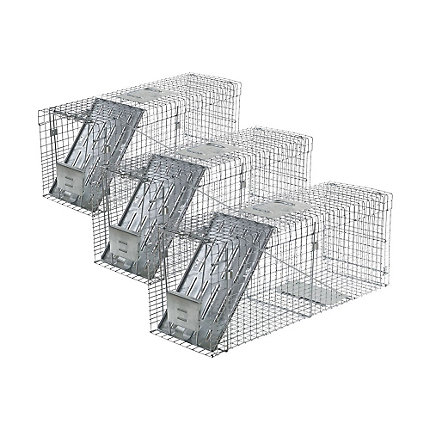 Havahart® Large 1-Door Collapsible Trap - 3 Pack