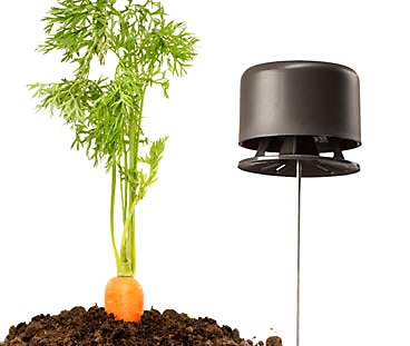 Repellent Safe For Vegetable Gardens