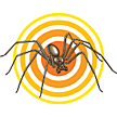 Spider Ready-to-Use Sprays