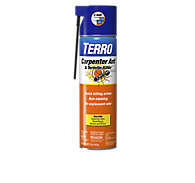 TERRO® Carpenter Ant & Termite Killer Aerosol - 12 Pack
