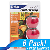 TERRO® Fruit Fly Trap - 6 Pack