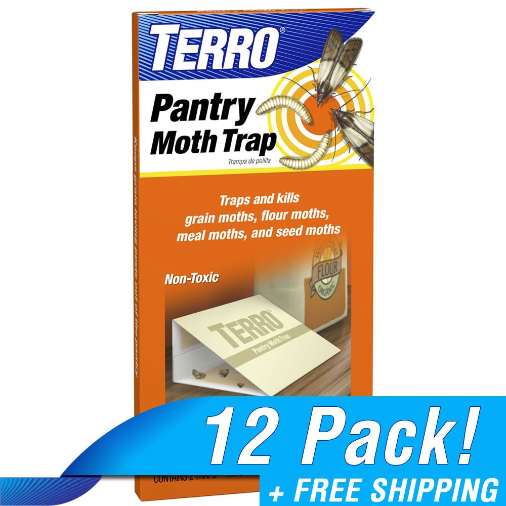 Terro 174 Pantry Moth Traps Bulk 12 Pack Terro Com