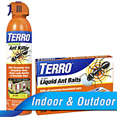 TERRO® Liquid Ant Bait - Outdoor Ant Killer