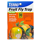 TERRO® Fruit Fly Trap - 1 Pack