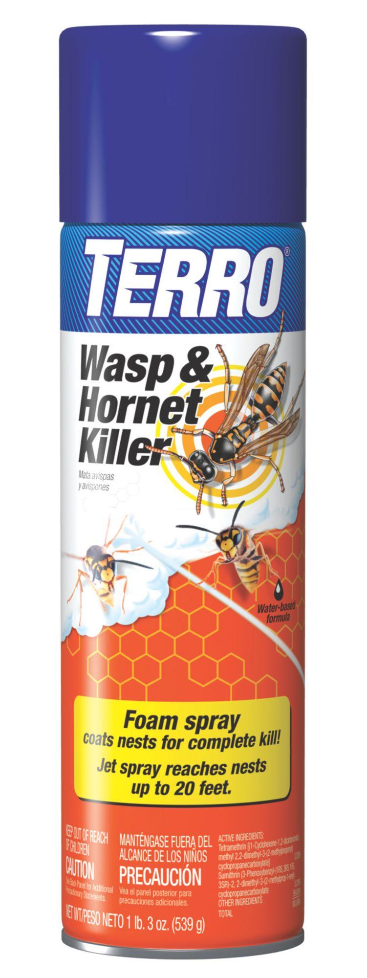 how to use antout spray to kill ant