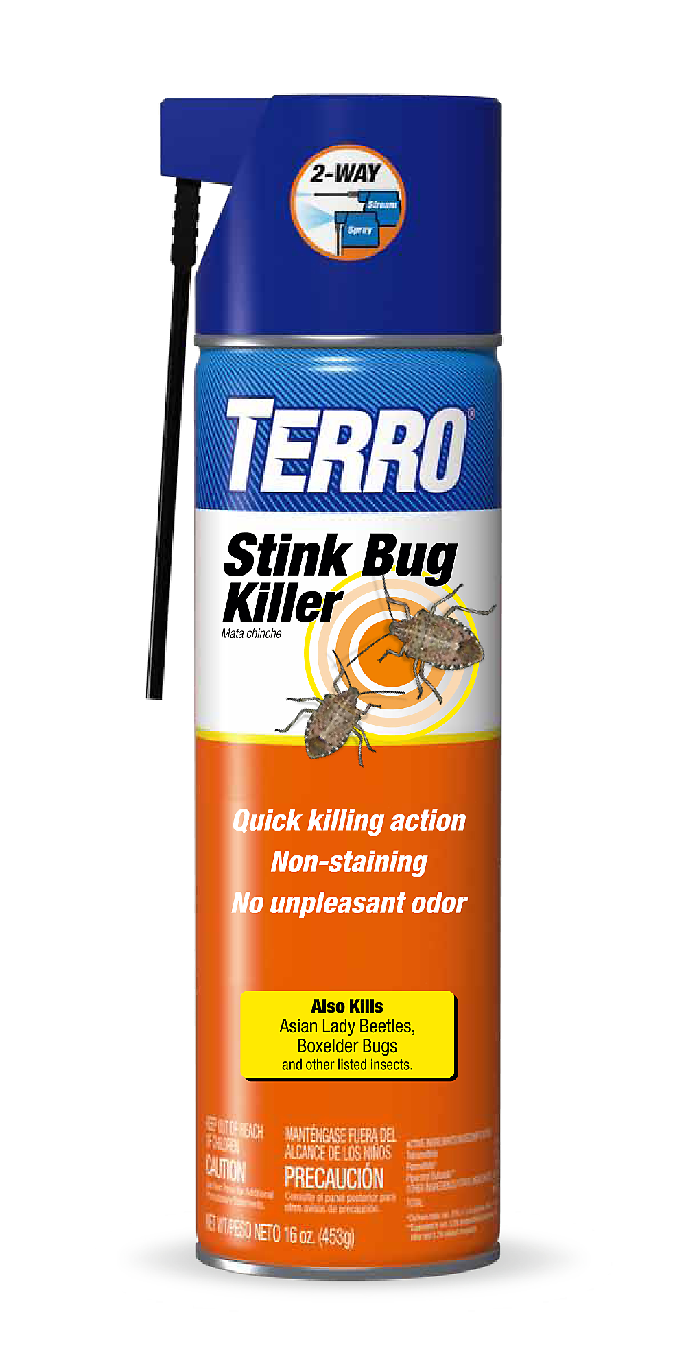 Brown Marmorated Stink Bug Facts Amp Information Terro 174