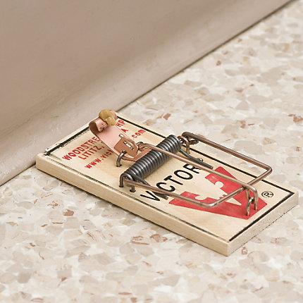 Victor 174 Metal Pedal Mouse Trap 360 Traps Bm040 360