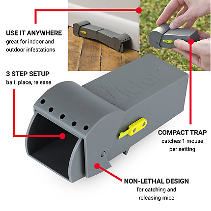 Victor® Live Mouse Trap, Model # BM007-12 | Victorpest com