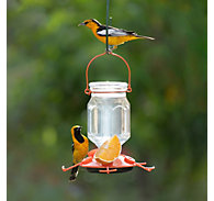 Perky-Pet® Top-Fill Glass Oriole Feeder - 22 oz