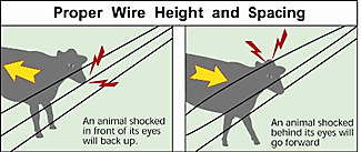 proper wire height and spacing