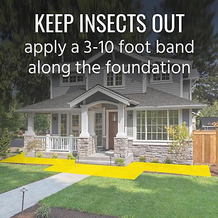 Terro Ant Killer Plus Ant Granules For Your Home