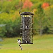 Perky-Pet® Squirrel Stumper® - 3 lb Seed Capacity