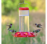 Perky-Pet® Grand 48 Plastic Hummingbird Feeder - 48 oz Nectar Capacity