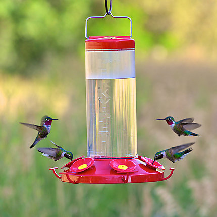 Perky-Pet® Grand 48 Plastic Hummingbird Feeder - 48 oz Nectar Capacity
