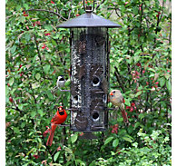 Perky-Pet® Squirrel-Be-Gone® III Wild Bird Feeder - 8 lb Seed Capacity